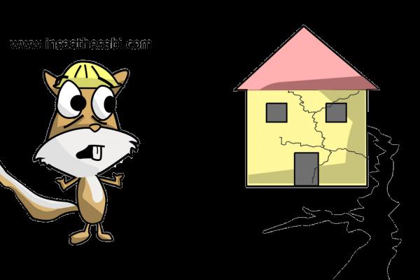 Satın Aldığınız Evin Depremde Yıkılmama Garantisi Var Mı?