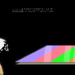 Linolyum Zemin Kaplama